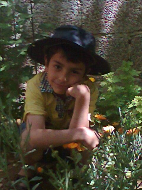 أخي محمود